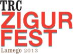TRC ZigurFest 2013