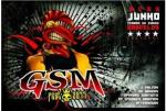 GSM Fest 2011